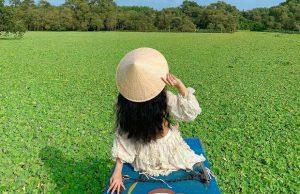Tour Cần Thơ Châu Đốc 1 ngày: Rừng Tràm Trà Sư – Miếu bà chúa Xứ