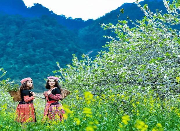 Mộc Châu thuộc tỉnh nào