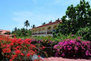 Combo Swiss Village Resort & Spa Phan Thiết 3N2Đ + Xe giường nằm khứ hồi